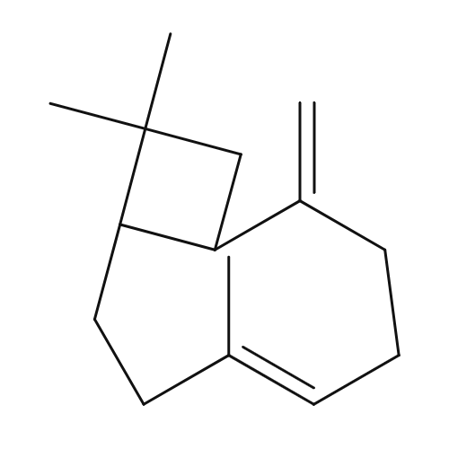 β-Caryophyllene chemical structure