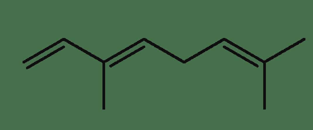 Trans-Ocimene
