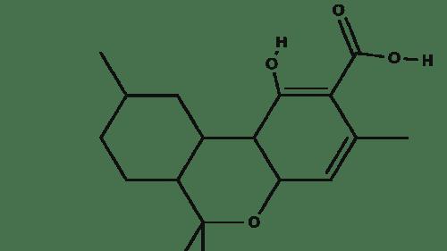 Tetraydrocannabiorcolic Acid chemical structure